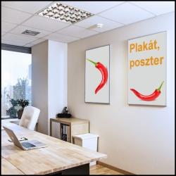 Plakát, Poszter